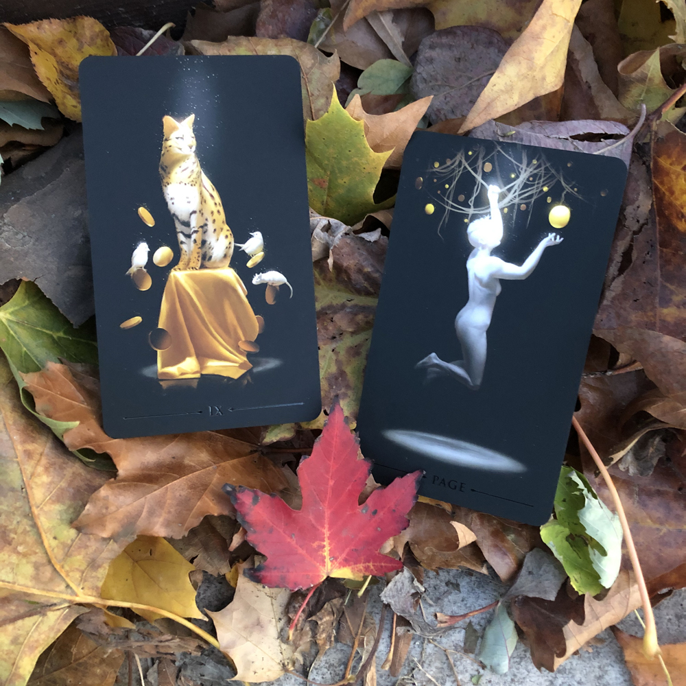 Leaf Three - Strength and Page of Pentacles