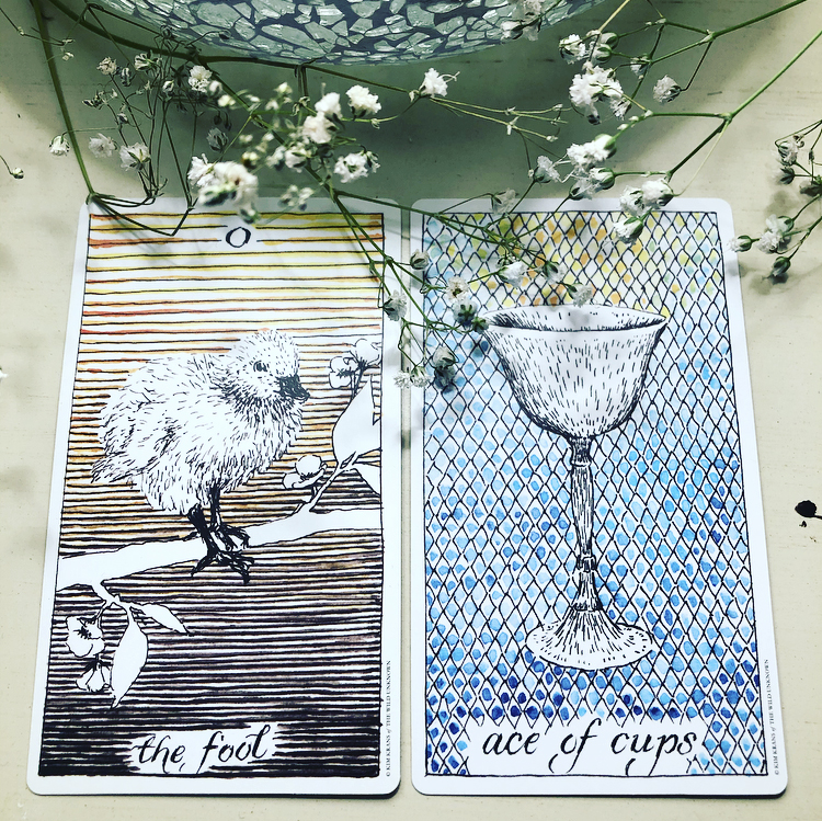 The Wild Unknown - The Fool, Ace of Cups